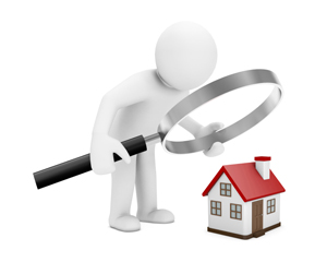 RICS Homebuyers Report & Property Surveys for Newbury and Reading